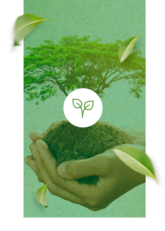edilimp-sustentabilidade-foto-natureza-atualizada-1