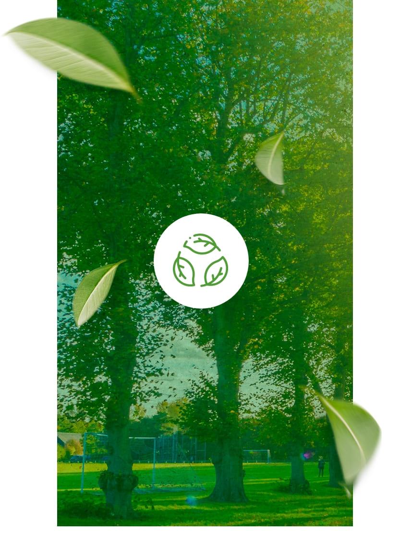 edilimp-sustentabilidade-foto-natureza-atualizada-2